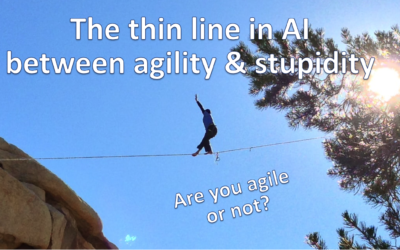 The thin line between agility & stupidity in AI